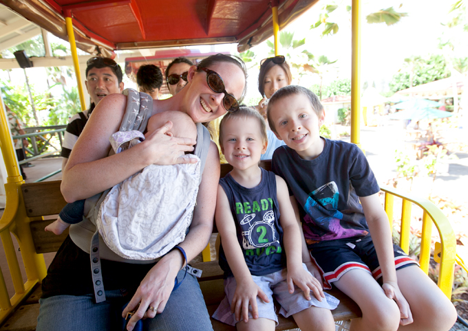 dole-plantation-pineapple-express-train-ride-02
