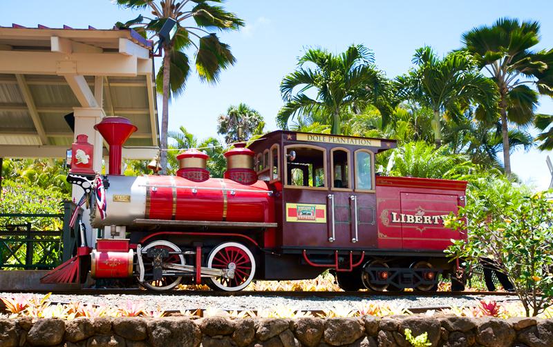 pineapple express train display
