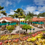 dole-plantation-review