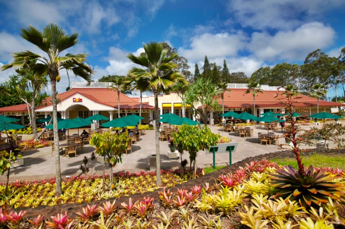 Things To Do at Dole Plantation | Trip Report