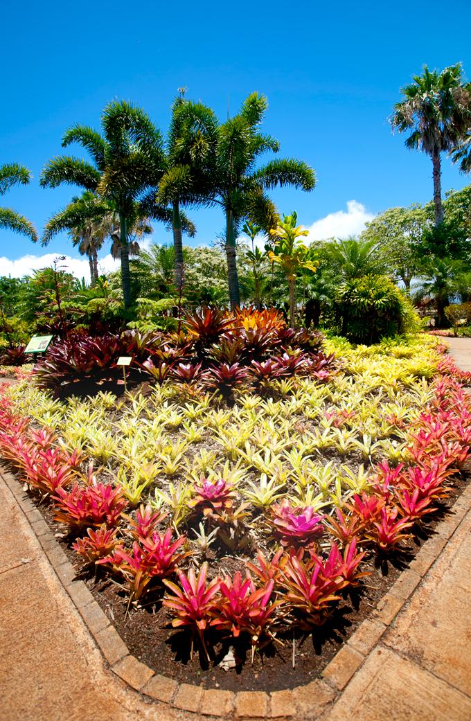 plantation garden tour