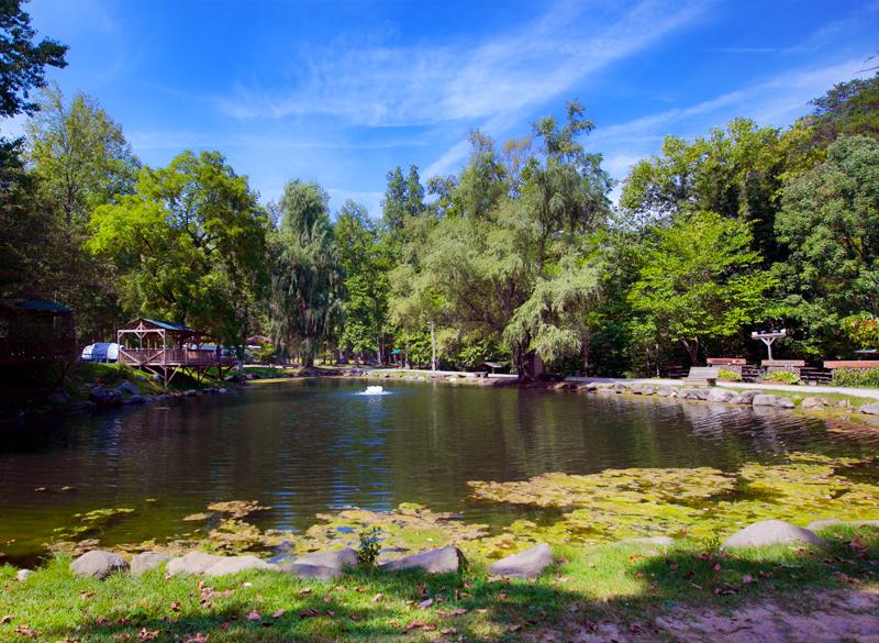 adventure-bound-gatlinburg-campground-trout-pond