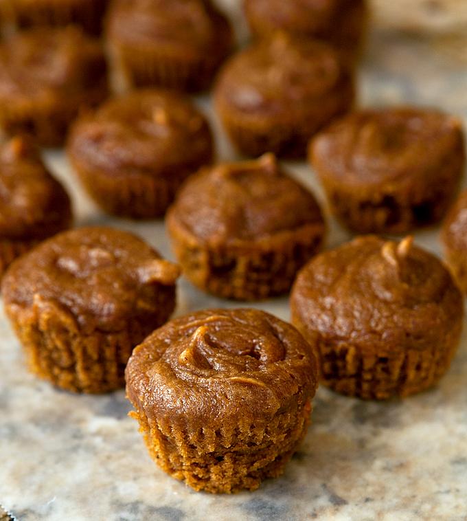 flourless-gluten-free-pumpkin-spice-peanut-butter-muffins-01