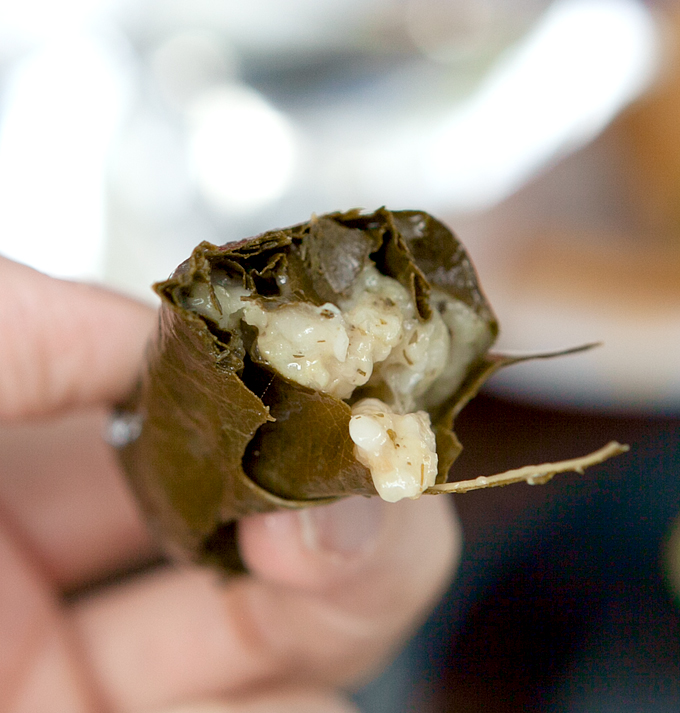 knoxville-2015-greek-fest-dolmades-02