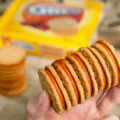 pumpkin-spice-oreos-review