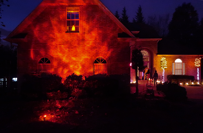 new-halloween-decor