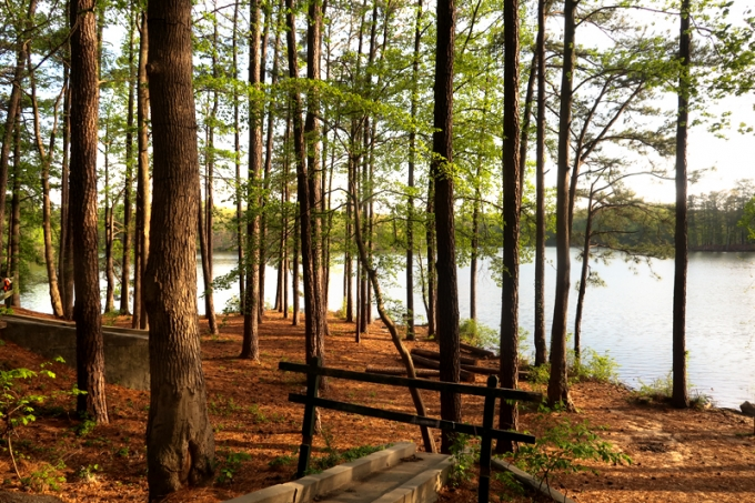 Weekend At Stone Mountain Campground