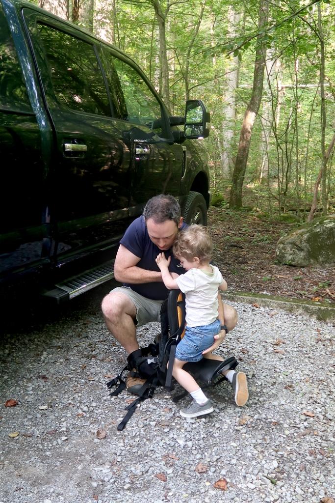 Freeloader toddler carrier review