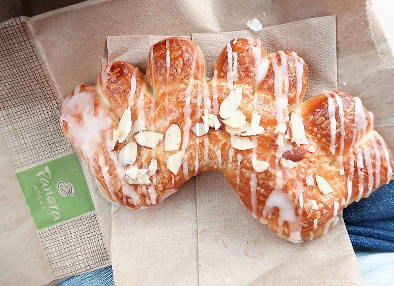 free-bear-claw-pastry-from-panera-on-birthday