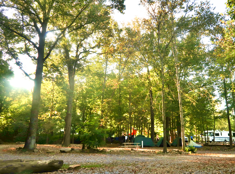 Where to camp in Jonesborough - review of Riverpark Campground