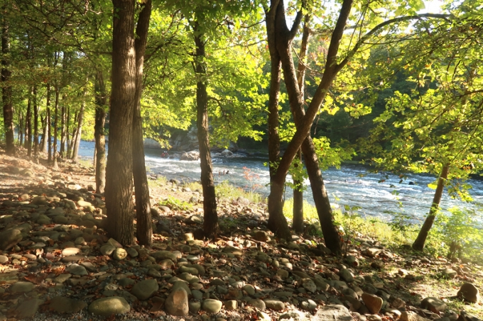 Where To Camp In Jonesborough, TN | Riverpark Campground Review