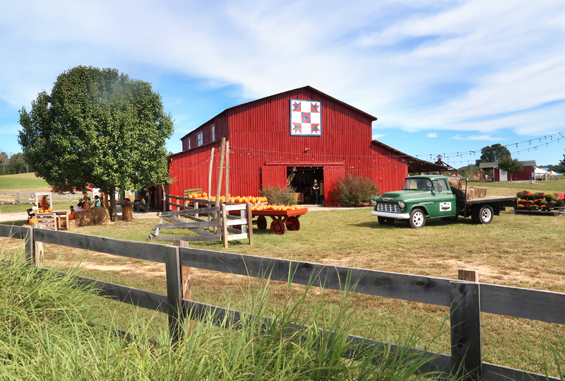 Oakes Farm Fall Attraction, Hay Ride, and Corn Maze in Corryton Tennessee