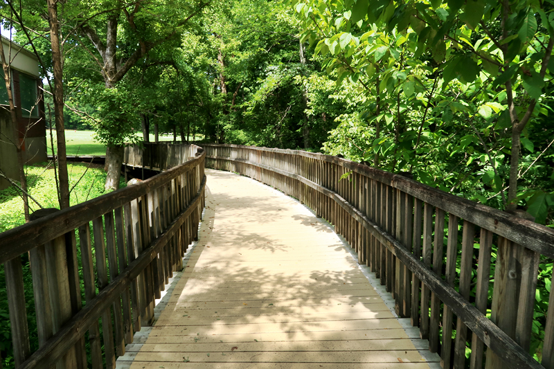 Review of the River Styx Spring hike in Mammoth Cave Kentucky
