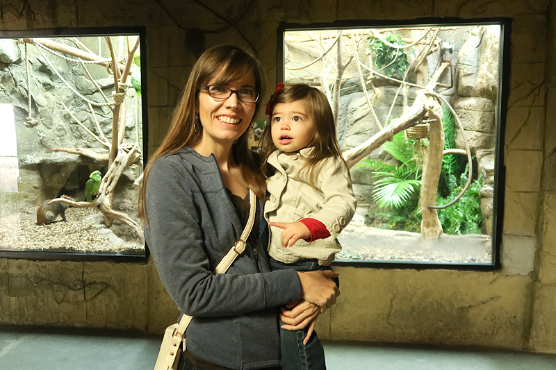 Our visit to Rainforest Adventures Zoo in Pigeon Forge!