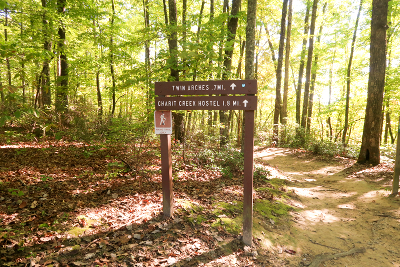 Twin Arches Loop Trail Hike in Big South Fork