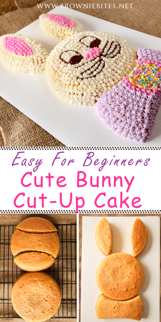 Easy bunny cut up cake using two round cakes of any flavor - great for beginners!