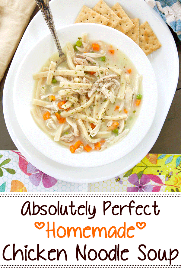 Pinterest image with text for homemade chicken noodle soup